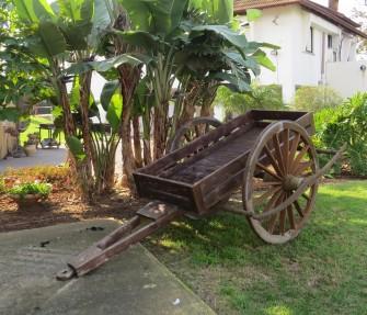 34. עגלה מעץ- כרכרה